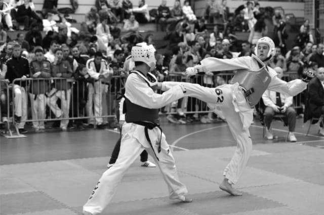 fysiotherapie vechtsport